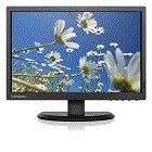 ThinkVision E2054 19.5-inch LED Backlit LCD Monitor