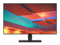 ThinkVision P27h-20 27-inch 16:9 QHD Monitor with USB Type-C