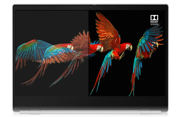 A ThinkBook 13s' display, showing a very colorful parrot about to land.