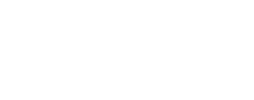 Premier Support